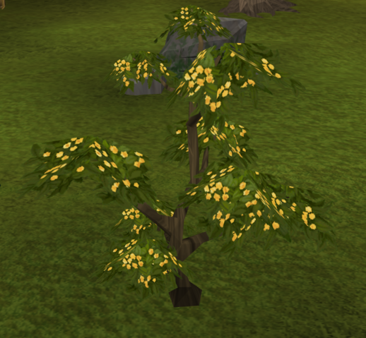 File:Neverberry bush.png