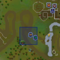 Fairy ring CLR location.png