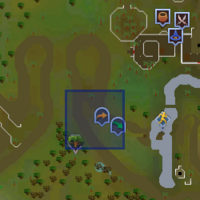 Fairy ring CLR location