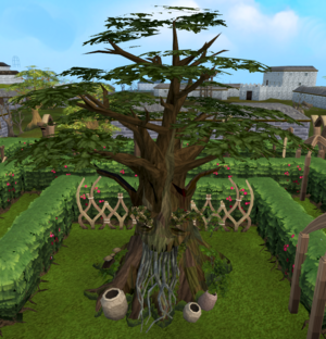 Village spirit tree