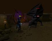 Fighting black dragon