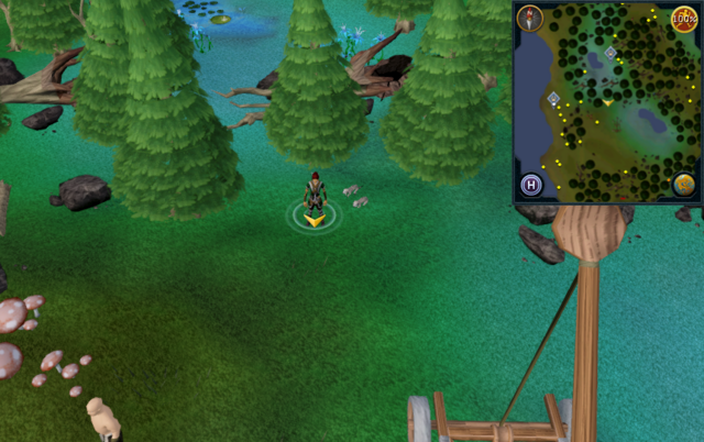 File:Scan clue Tirannwn north of Tyras Camp.png