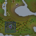 Ape Atoll Dungeon entrance location.png