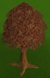 Maple tree built