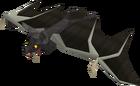 Vampire bat old