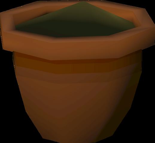 File:Yew seedling (w) detail.png