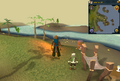 Cryptic clue fire next to Captain Klemfoodle.png