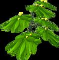 Fireberry bush.png