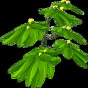 Fireberry bush
