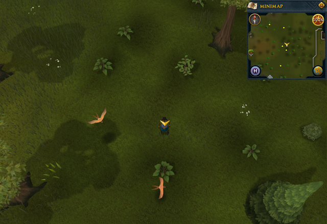 File:Scan clue Piscatoris Hunter area east of fairy ring.png