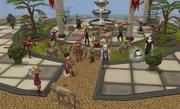 Wolf attack at varrock bank