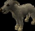 Greyhound puppy (grey) pet.png