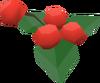 Pharmakos berries detail