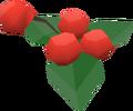 Pharmakos berries detail.png