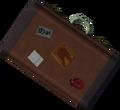Suitcase detail