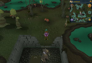 Scan clue Haunted Woods north of Werewolf Agility Course