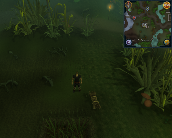 File:Compass clue Canifis north of Mushroom patch.png