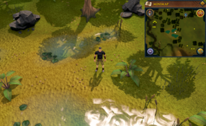 Treasure Trails/Guide/Coordinates | RuneScape Wiki | FANDOM