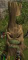 Evil hawthorn tree.png