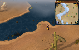 Scan clue Kharidian Desert west of desert lizards