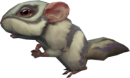 Grey chinchompa (NPC)
