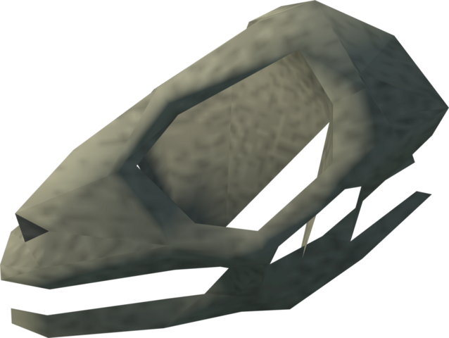 File:Lizard skull detail.png