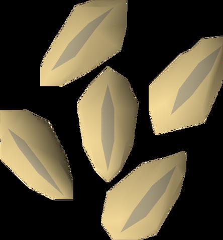 File:Barley seed detail.png
