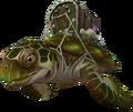 Treasure turtle.png