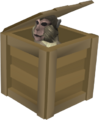Crate (monkey).png
