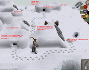 Polar Kebbit Hunting strategy