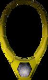 Phoenix necklace detail