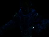 Manifest shadow