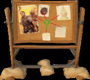 Board (Meg's cases)