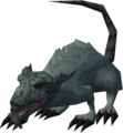 Dungeon rat (Clock Tower).png