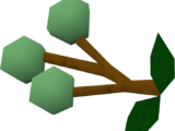 Grapes of Guthix