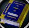 Illuminated Book of Wisdom detail