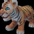 Tiger cub pet.png