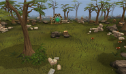 Carnivorous chinchompa hunting area