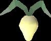 Evil turnip detail