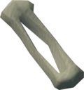 Fibula bone detail