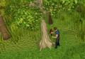Cutting mahogany logs.png