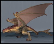 Fire Drake (adult) concept art