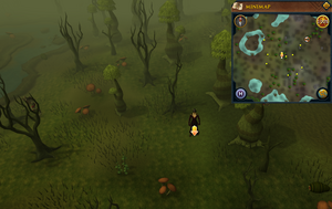 Scan clue Haunted Woods south-west of fairy ring