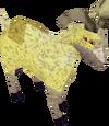 Desert Goat