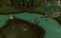 Scan clue Haunted Woods south-west of musician.png