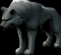 Cywir Alpha