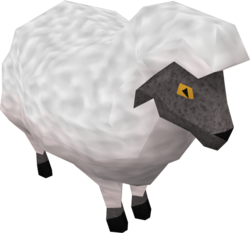 Sheep (Back to the Freezer)