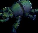 Small scarab