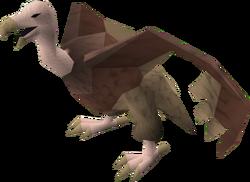 Vulture (brown) pet