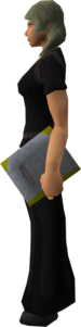 Armadyl's Book of Law equipped